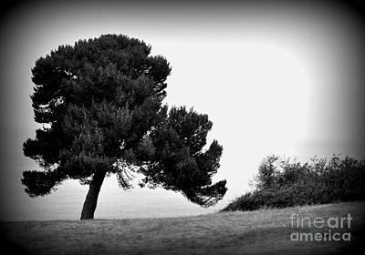 Tree Art Print by Nicky Dou