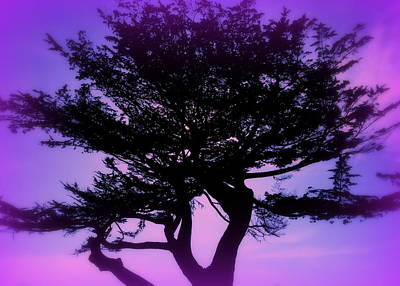 Tree Of Glory Art Print by Cindy Wright