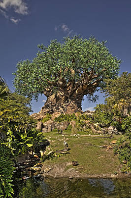 Tree Of Life Hdr Original