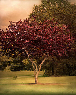 Tree Of Love Art Print by Jai Johnson