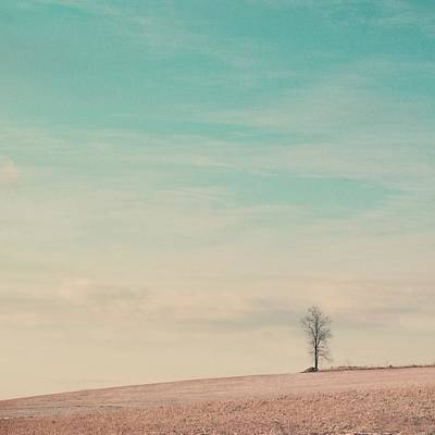 Bare Trees Photograph - Tree On A Hill Top by Laura Ruth