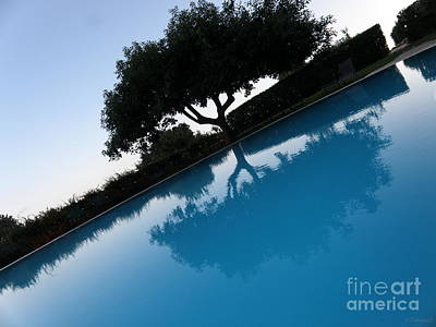 Italy Photograph - Tree Reflection by Tanya  Searcy
