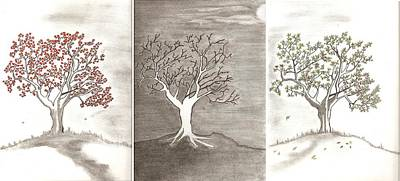 Cherry Trees Drawing - Tree Seasons by Salomi Prakash