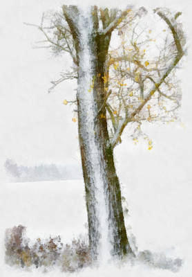 Digital Art - Tree With Autumn Leaves In The Snow - Aquarell by Matthias Hauser