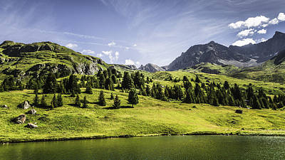 Graubunden Photograph - Trees And Lake In Grassy Rural Landscape by Manuel Sulzer