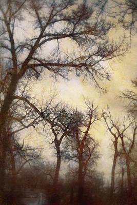Trees  Art Print by Diane Dugas