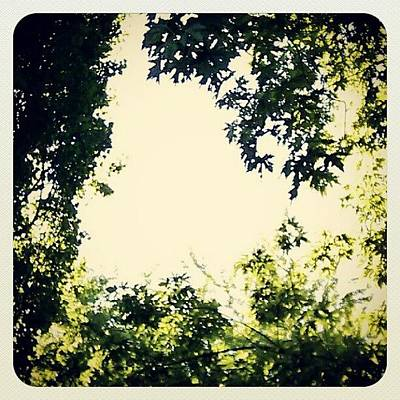 #trees #green #sky #pattern #style Art Print by My Mcwp
