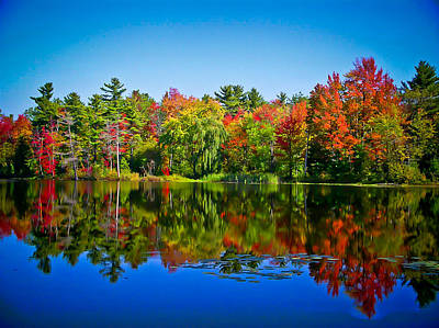 Photograph - Trees In Peak Fall Colors Reflected On A Blue Lake by Chantal PhotoPix