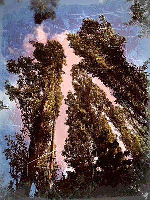 Trees Art Print by Jan Steadman-Jackson