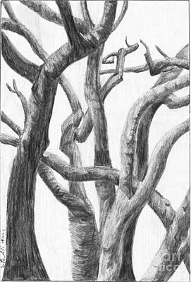 Trees Art Print by Safa Al-Rubaye