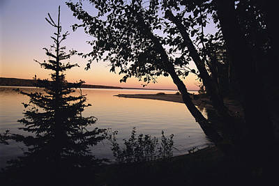 Prince Albert National Park Photograph - Trees Stand Silhouetted by Raymond Gehman