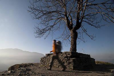 Trekking Around A Tree With A Stone Art Print