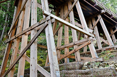 Wooden Photograph - Trestle Feet Kinsol Trestle Footings And Foundations by Andy Smy