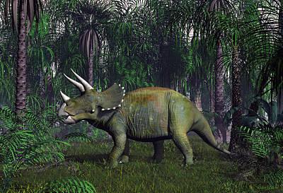 Digital Art - Triceratops Dinosaur by Walter Colvin