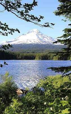 Photograph - Trillium Lake At Mt. Hood by Athena Mckinzie