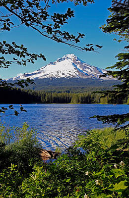 Photograph - Trillium Lake At Mt. Hood II by Athena Mckinzie
