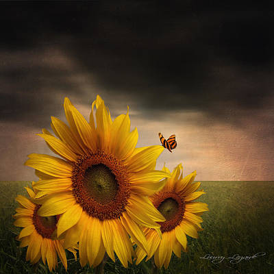 Sunflower Art Photograph - Trinity by Lourry Legarde