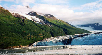 Photograph - Trip To Glacier Bay by C Sitton