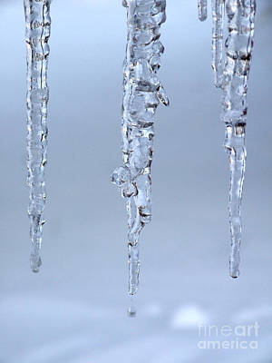Photograph - Triple Icicles by Kristen Fox