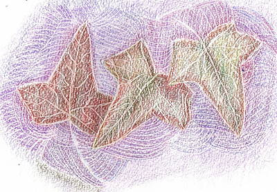 Rubbing Drawing - Triple Leaves by Anne-Elizabeth Whiteway
