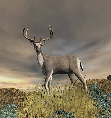 Digital Art - Trophy Buck by Walter Colvin