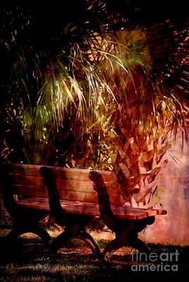 Park Scene Photograph - Tropical Bench by Susanne Van Hulst