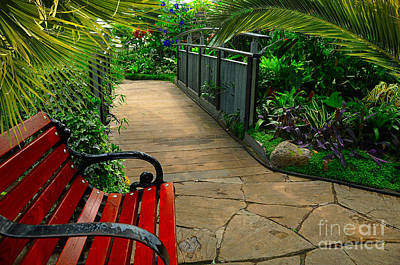 Tropical Garden Pathway Art Print