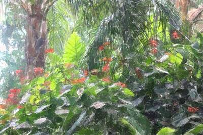 Art Print featuring the photograph Tropical Paradise by Donna  Smith