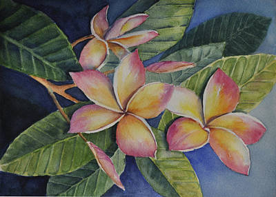 Painting - Tropical Plumerias by Sandy Fisher