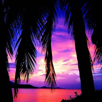 Sunset Wall Art - Photograph - Tropical Sunset by Luisa Azzolini