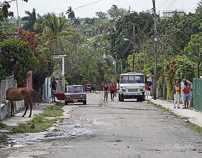 Photograph - Tropical Village by Cheri Randolph