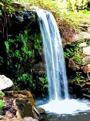 Tropical Waterfall And Pond Original
