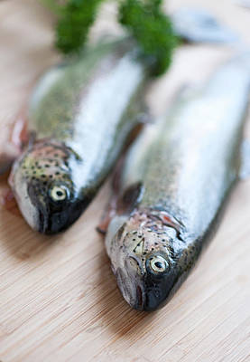 Fish Food Photograph - Trouts by Carlo A