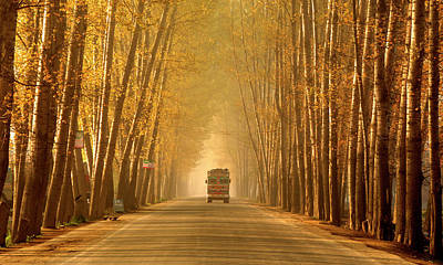 Truck In Golden Tunnel Art Print by PKG Photography