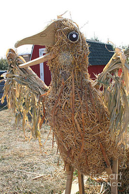 Photograph - Truly A Scarecrow by Susan Herber