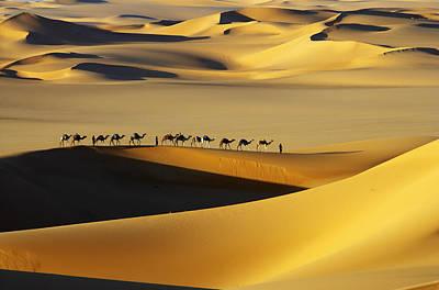 Tuareg Nomads With Camels In Sand Dunes Of Sahara Desert, Arakou Art Print by Johnny Haglund
