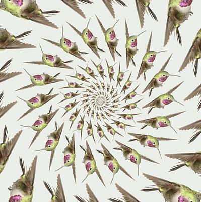 Iridescent Photograph - Tubular Hummingbird Invasion by Gregory Scott