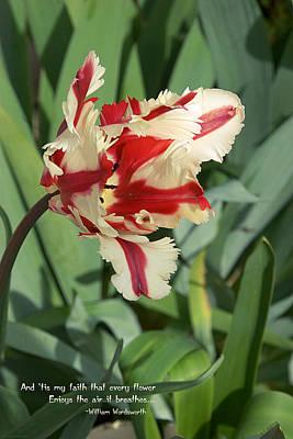 Tulip Color Art Print