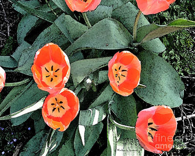 Mixed Media - Tulip Fest by Kimberly  Brown