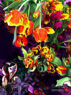 Tulip Floral Borealis Art Print by Charlie Spear
