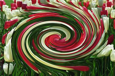 Tulip Tornado Art Print by Rick Rauzi