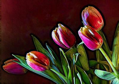 Tulip Traced Incandescence Art Print by Bill Tiepelman
