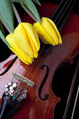 Violin Photograph - Tulips And Violin by Garry Gay