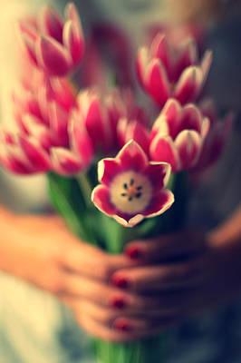 Tulips In Woman Hands Art Print by Photo by Ira Heuvelman-Dobrolyubova