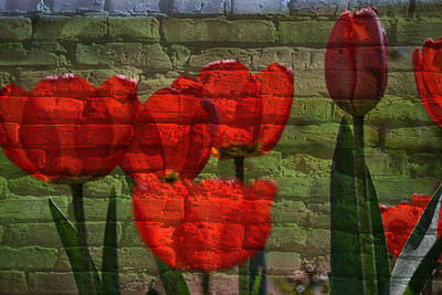 Grafitti Mixed Media - Tulips On Bricks by Eric Liller
