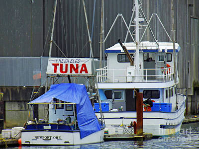 Photograph - Tuna Boats by Methune Hively