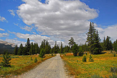 Photograph - Tuolomne Meadows by Lynn Bauer