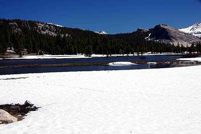 Photograph - Tuolumne Meadows Spring Thaw by Michael Courtney