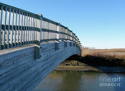 Photograph - Turkey Point Bridge Shadow  by Nancy Patterson