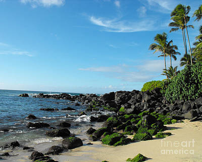 Turtle Beach Oahu Hawaii Art Print